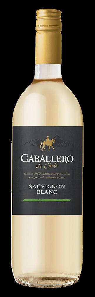 CABALLERO DE CHILE